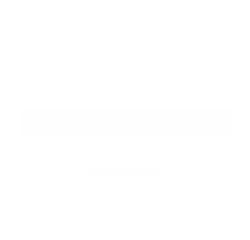 Blaine Slingerland Portfolio Logo